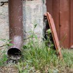 Gør hverdagen mere bæredygtig med en faskine