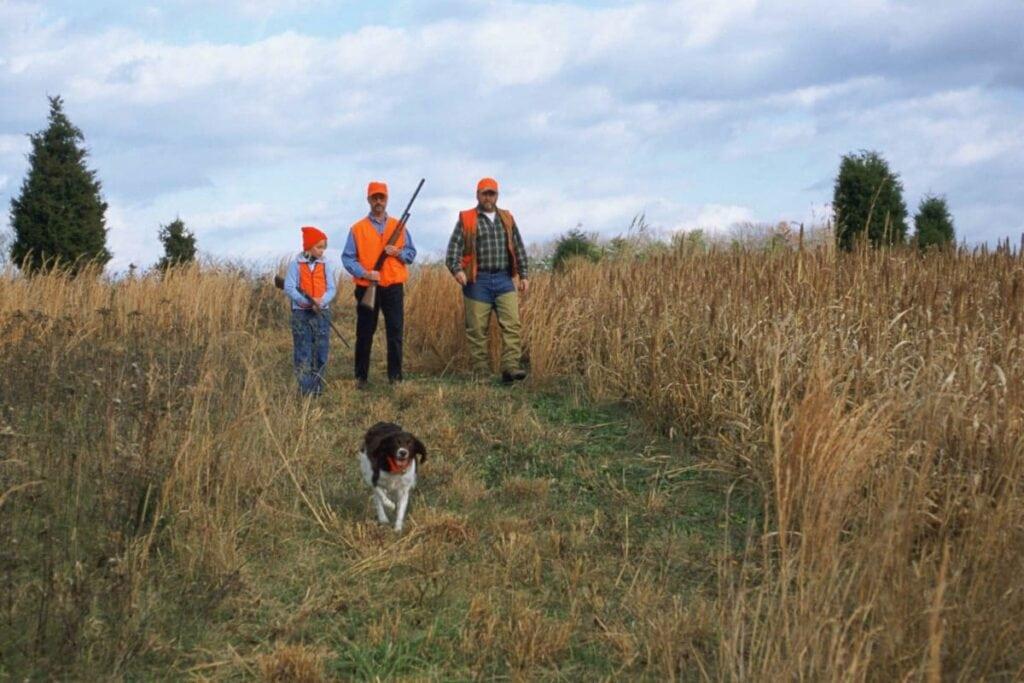 Tips til at starte din egen blog om jagt