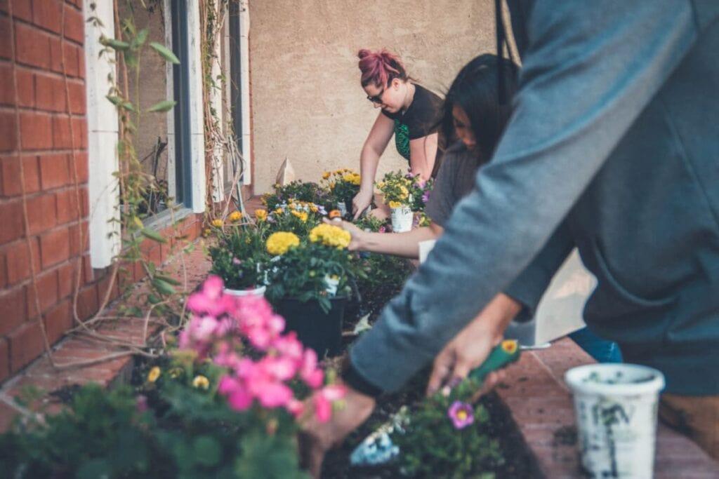 Sådan får du den bedst mulige oplevelse, når du arbejder i haven
