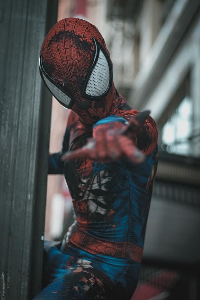 Forskellige spiderman versioner